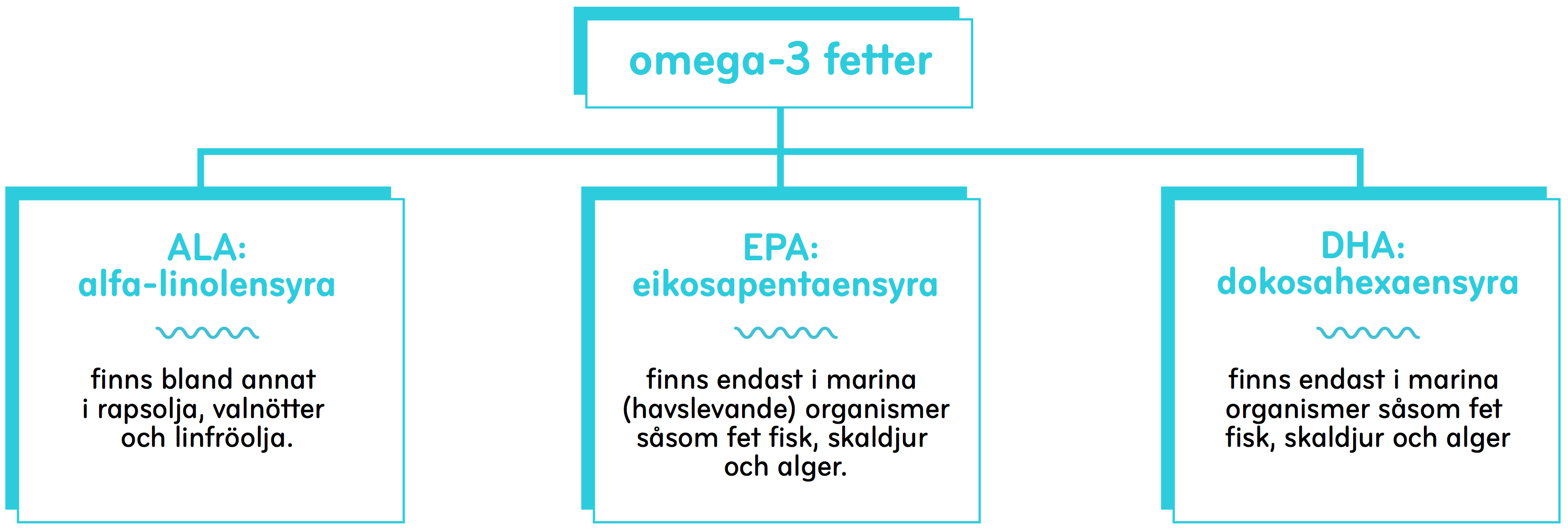 omega-fat_swe