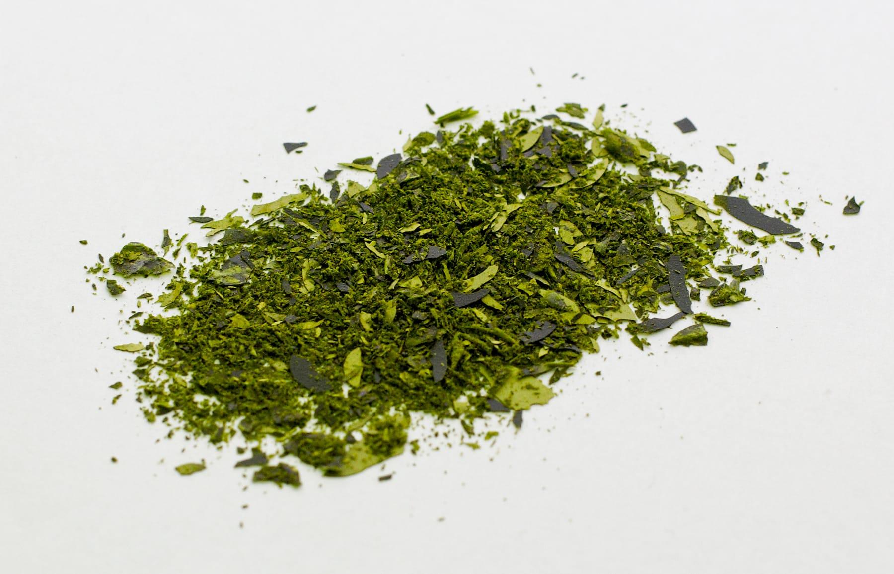 olika sorters alger
